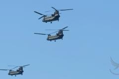3-Chinooks