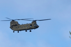 chinook-d-473