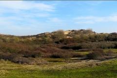 New panorama 8x2